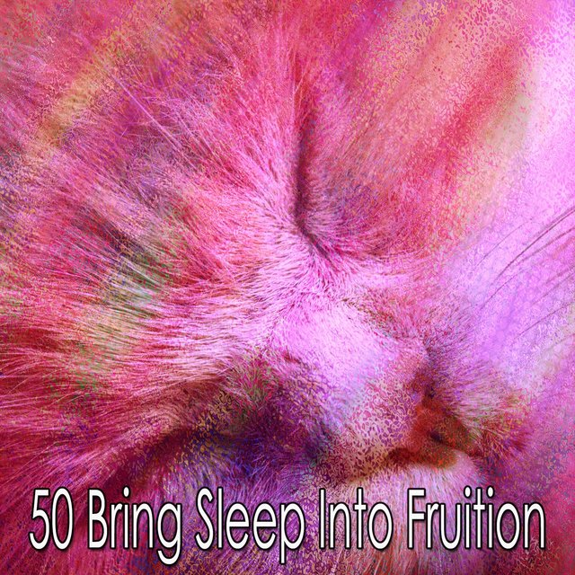 50 Bring Sleep into Fruition