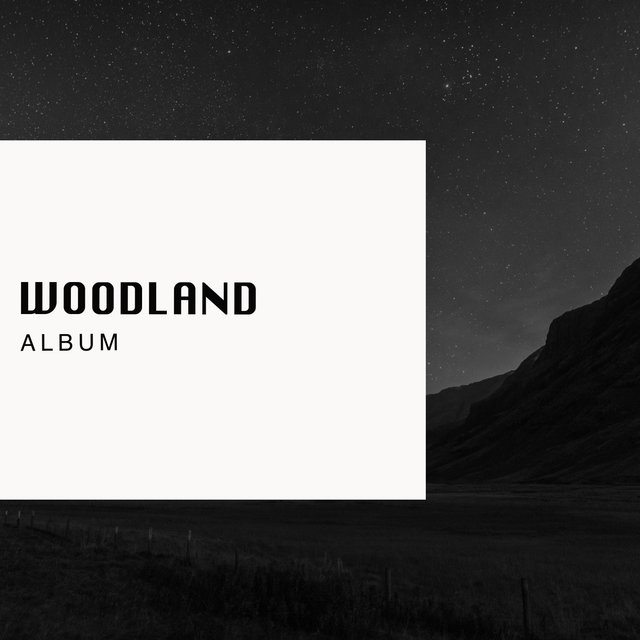 Looping International Woodland Album