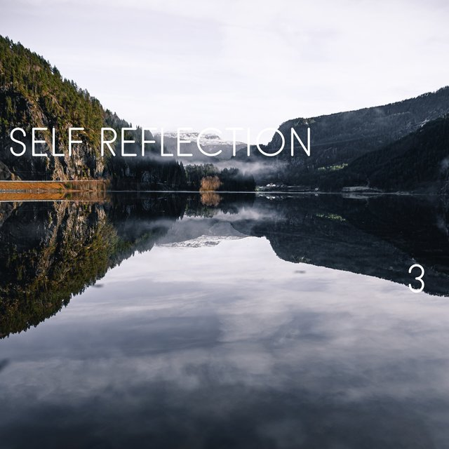 Self Reflection, Vol. 3