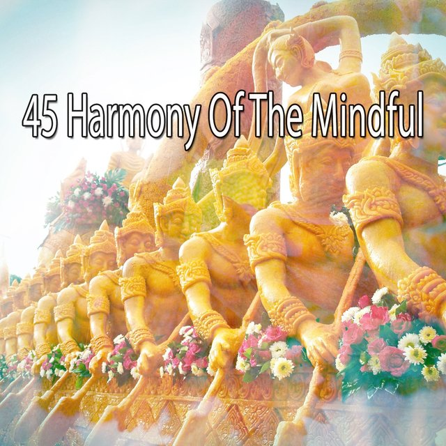 45 Harmony of the Mindful