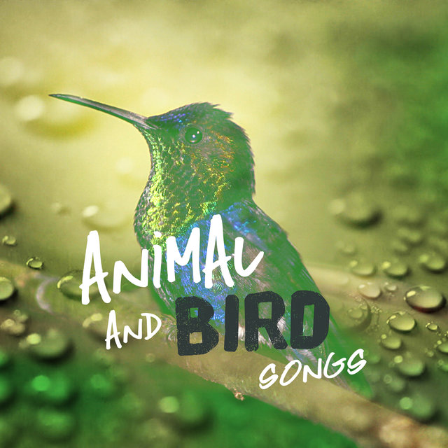 Animal and Bird Songs
