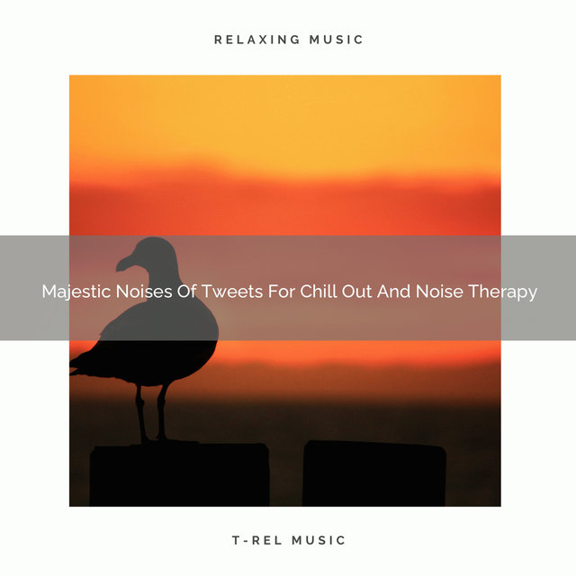 Majestic Noises Of Tweets For Chill Out And Noise Therapy
