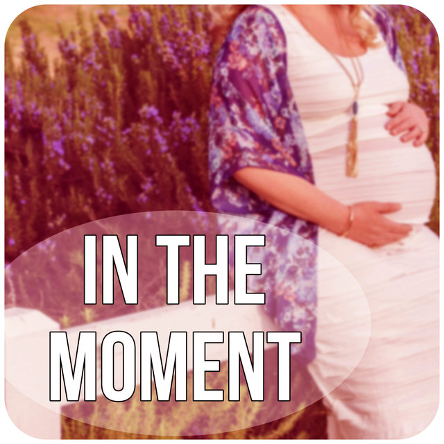 In the Moment - Guided Meditations for Conception and Pregnancy, Hypnosis for Mom and Baby, Nature Sounds for Pregnancy and Birth