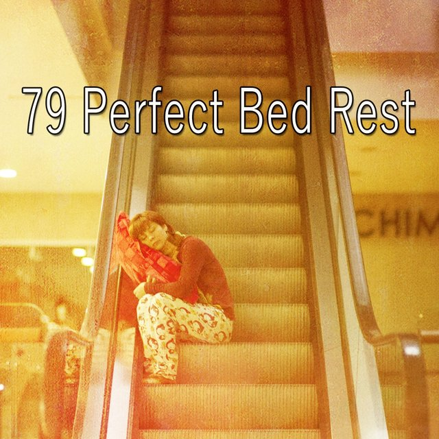 79 Perfect Bed Rest