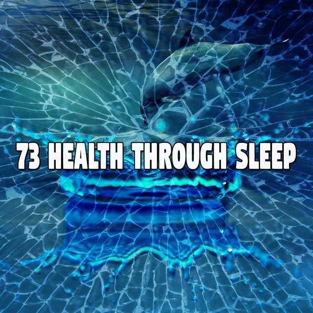 73 Health Through Sle - EP