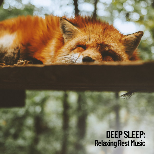 Deep Sleep: Relaxing Rest Music