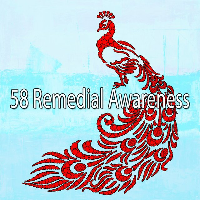 58 Remedial Awareness