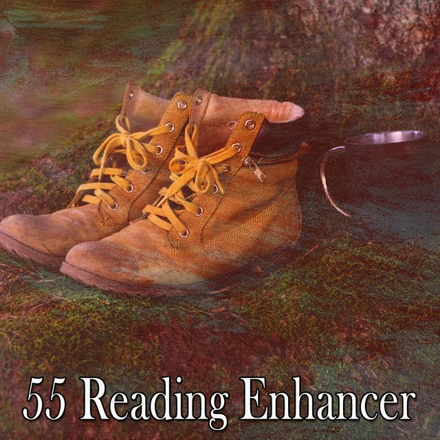 55 Reading Enhancer