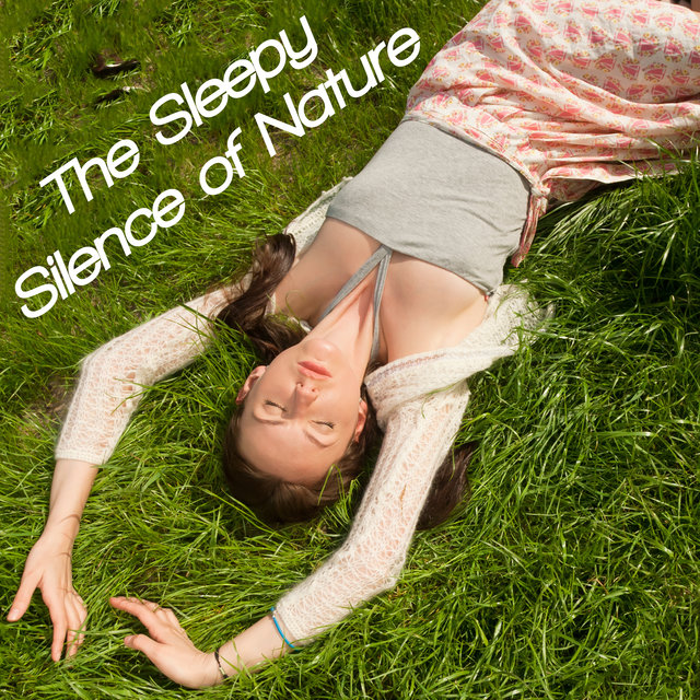 The Sleepy Silence of Nature - Selected New Age Music That Will Help You Fall Asleep Quickly and Make You Feel Refreshed in the Morning