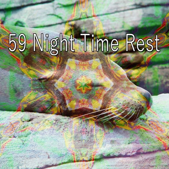 59 Night Time Rest