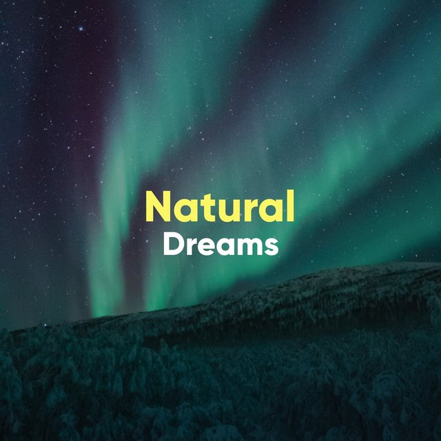 # Natural Dreams