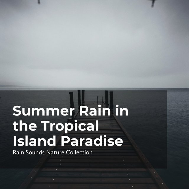 Summer Rain in the Tropical Island Paradise