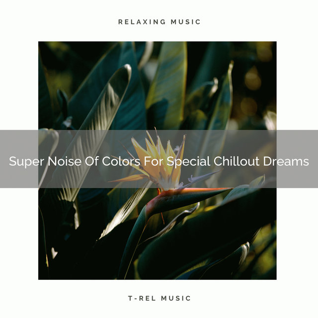 Super Noise Of Colors For Special Chillout Dreams