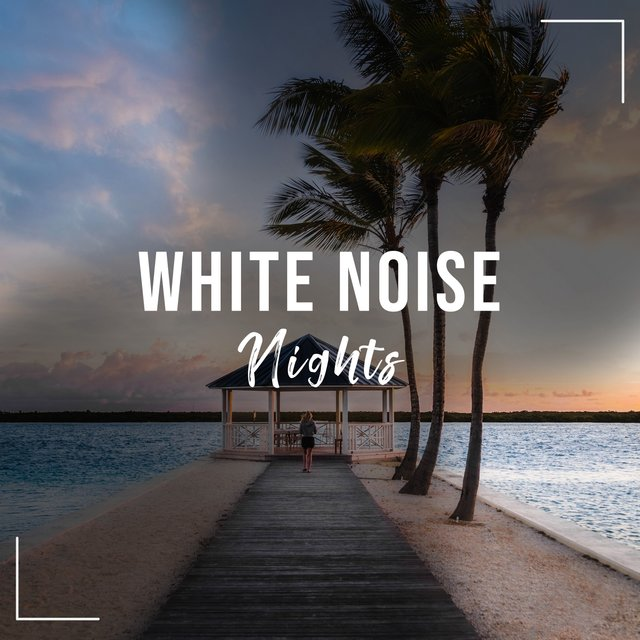 # White Noise Nights