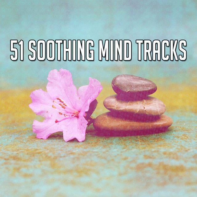 51 Soothing Mind Tracks