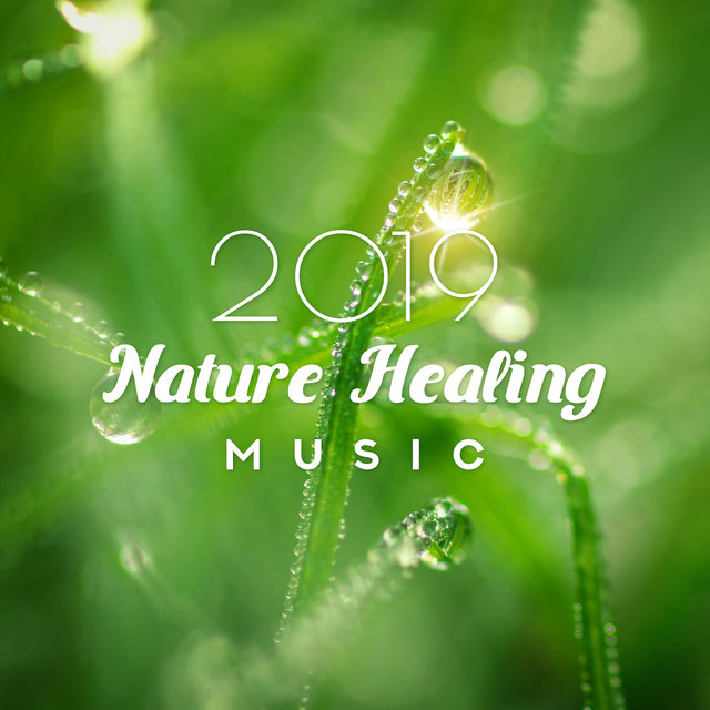 2019 Nature Healing Music: New Age Nature & Instrumental Music, Perfect Background for Healing Treatments, Increase Your Immunity, Improve your Mood and Regain a Will to Live