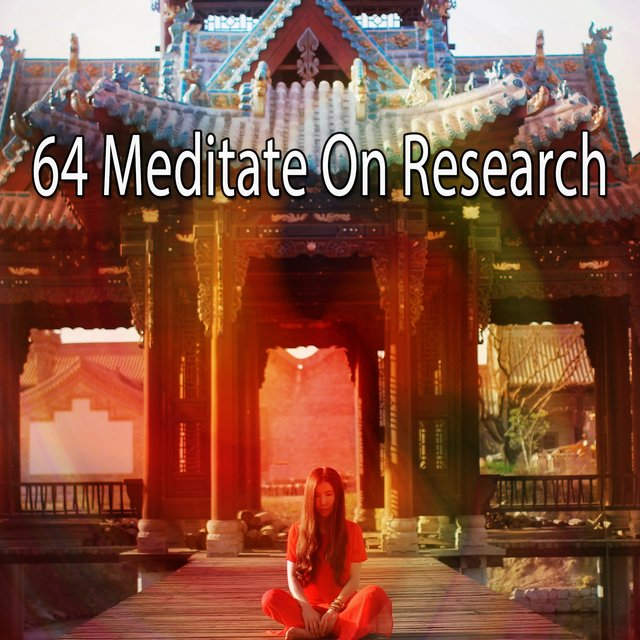 64 Meditate on Research