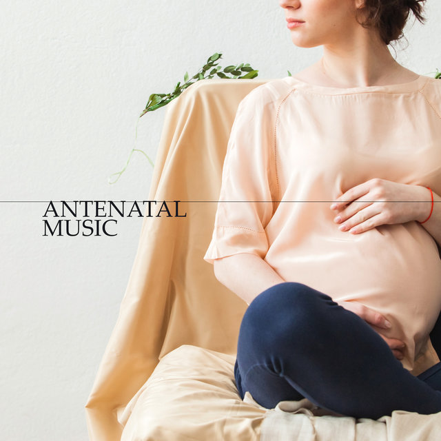 Antenatal Music: Relaxing Collection of 15 Songs to Relax and Relieve Stress before a Baby is Born