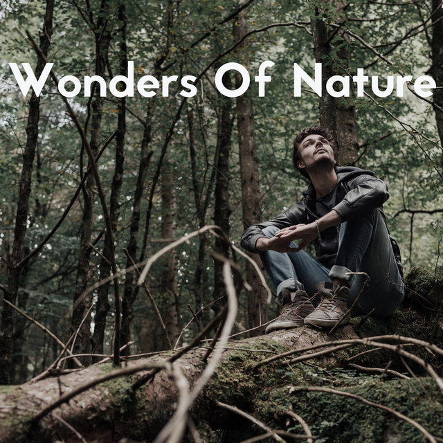 Wonders Of Nature: Breathtaking Music with Relaxing Sounds of Nature to Rest, Chill, Sleep, Spa
