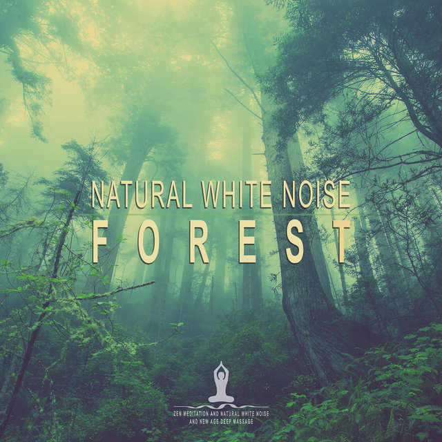 Natural White Noise: Forest
