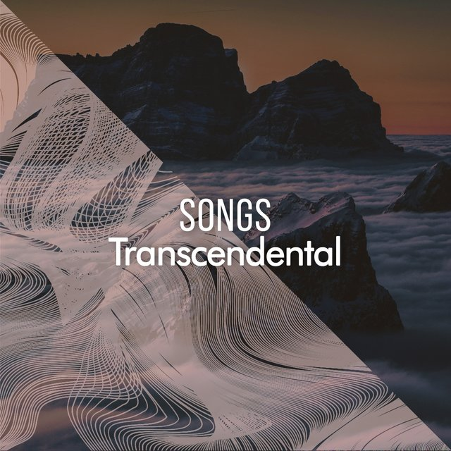 2020 Transcendental Focus Songs