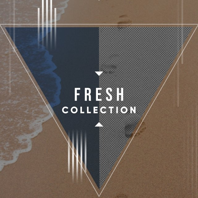 # 1 Album: Fresh Collection