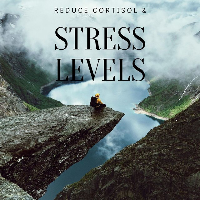 Reduce Cortisol & Stress Levels: Brings Positive Transformation, Solfeggio Sleep Music