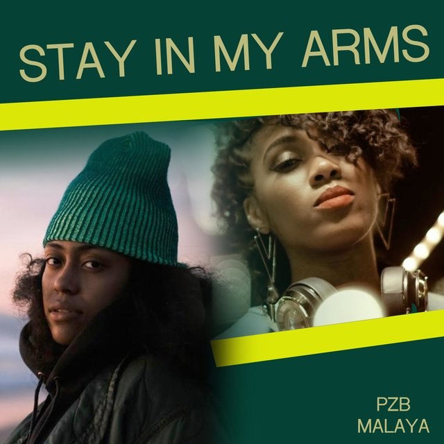 Stay in My Arms (feat. Malaya)