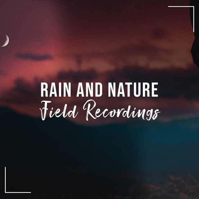 Flowing Garden Rain and Nature Field Recordings