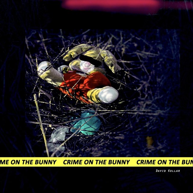 Crime on the Bunny