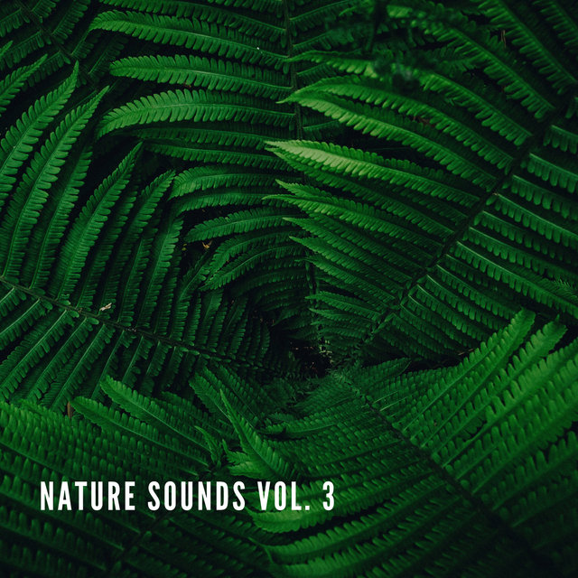 Nature Sounds Vol.2, Nature Music to Sleep