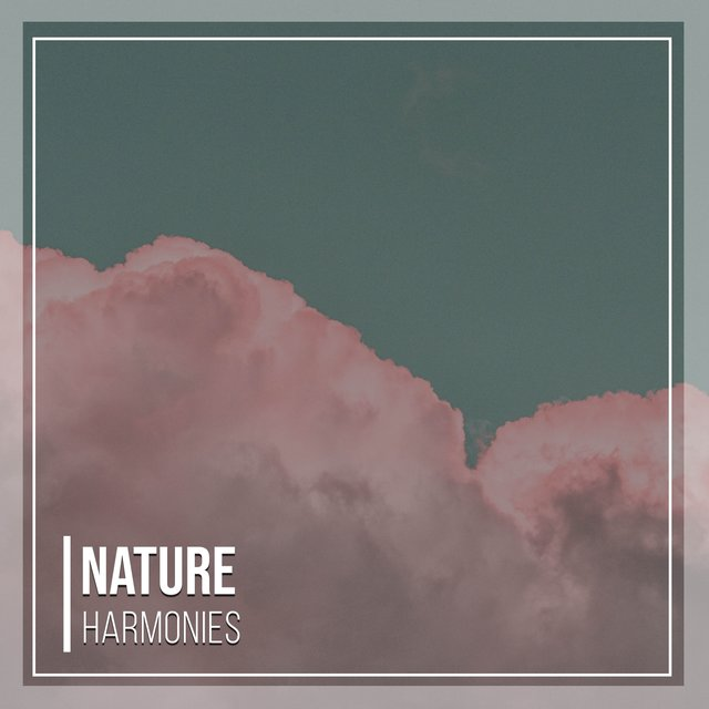 Soothing Ambient Nature Harmonies