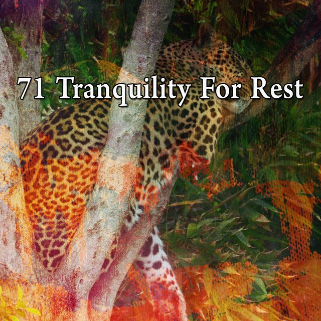 71 Tranquility for Rest