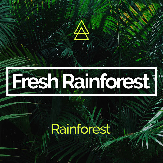 Fresh Rainforest