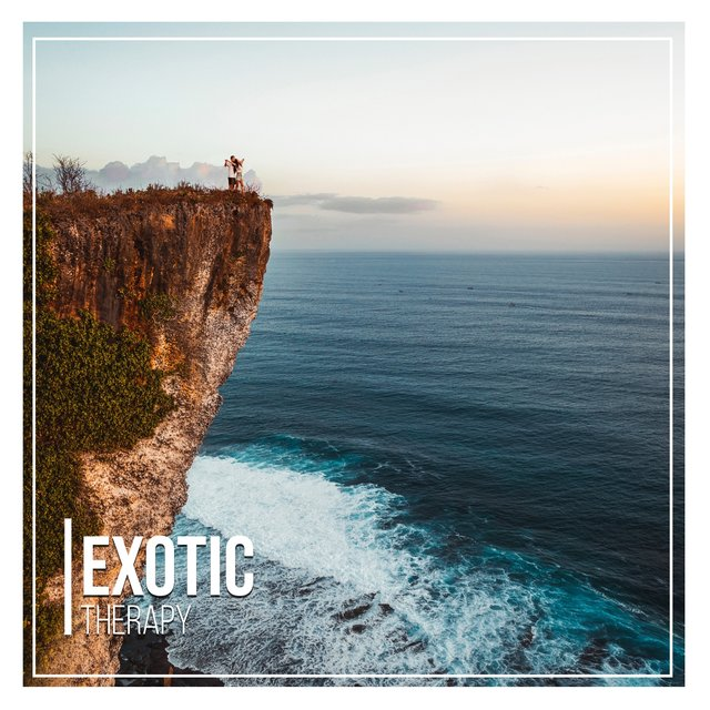 # 1 Album: Exotic Therapy