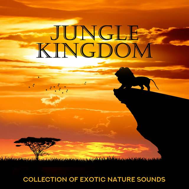 Jungle Kingdom - Collection of Exotic Nature Sounds: Therapy & Healing Relaxation