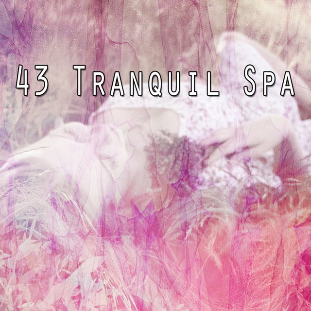 43 Tranquil Spa