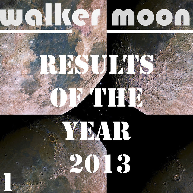 Results Of The Year 2013