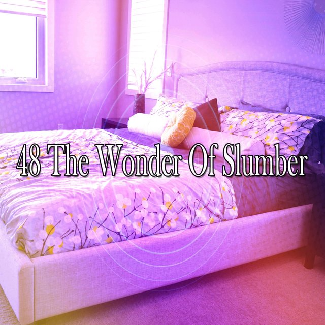 48 The Wonder of Slumber