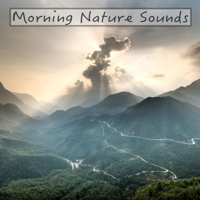 Morning Nature Sounds