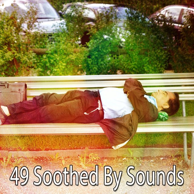 49 Soothed by Sounds