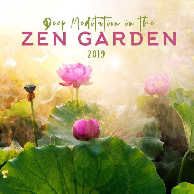 Deep Meditation in the Zen Garden 2019