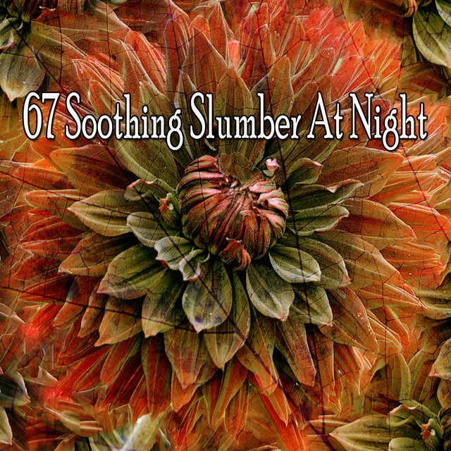 67 Soothing Slumber at Night