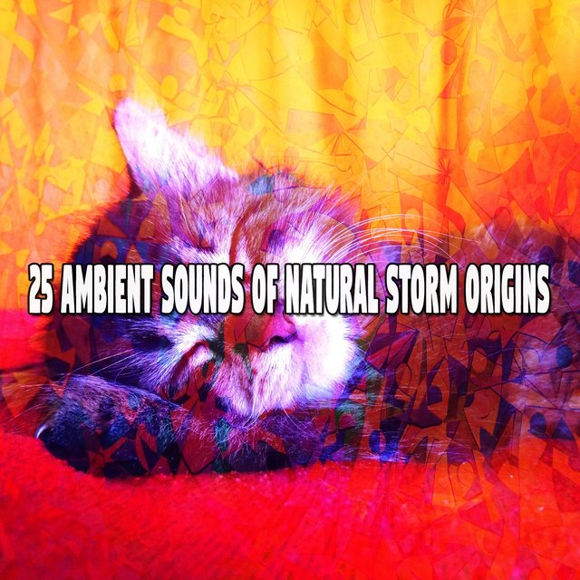25 Ambient Sounds of Natural Storm Origins