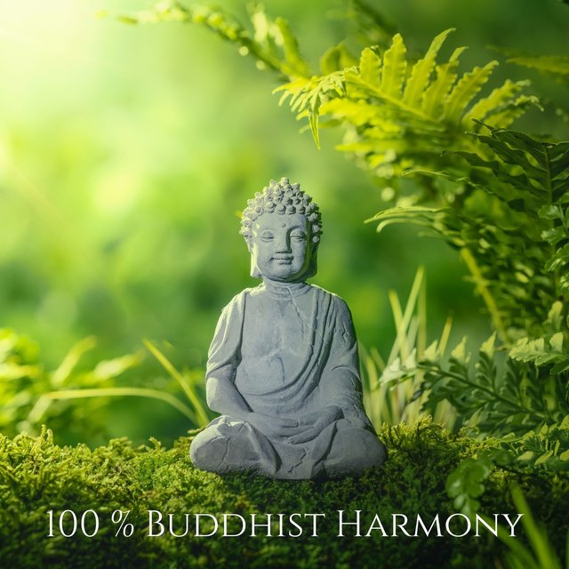 100 % Buddhist Harmony: Be Blessed & Deep Calm, Yoga, Meditation Music