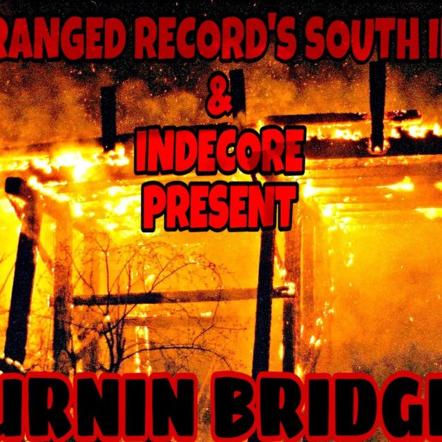 Cover art for album BURNIN BRIDGES by Sdubsthereptillian