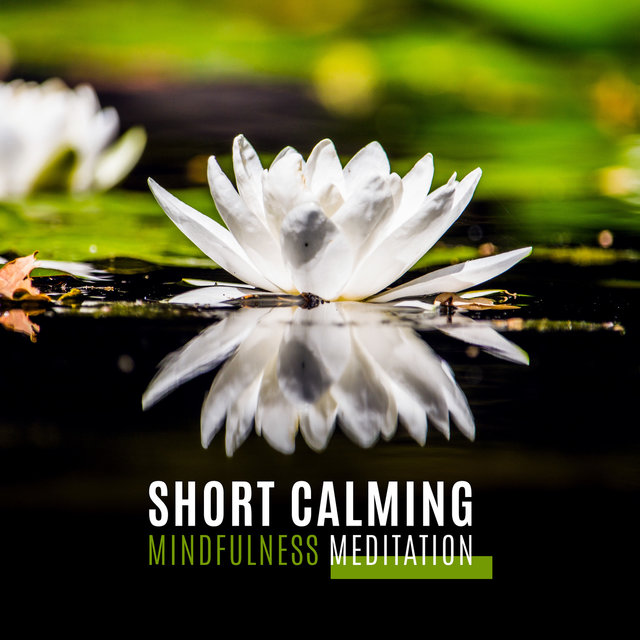 Short Calming Mindfulness Meditation - 15 Songs for Clear Mind and Relaxation & Healing Nature Sounds for Yoga, Sleep, Spa, Massage