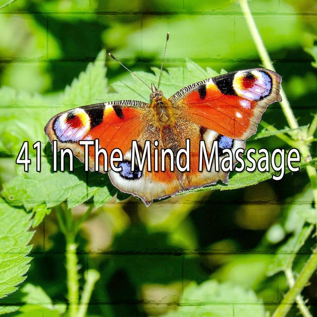 41 In the Mind Massage