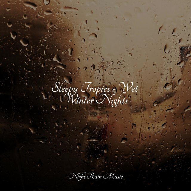 Sleepy Tropics - Wet Winter Nights