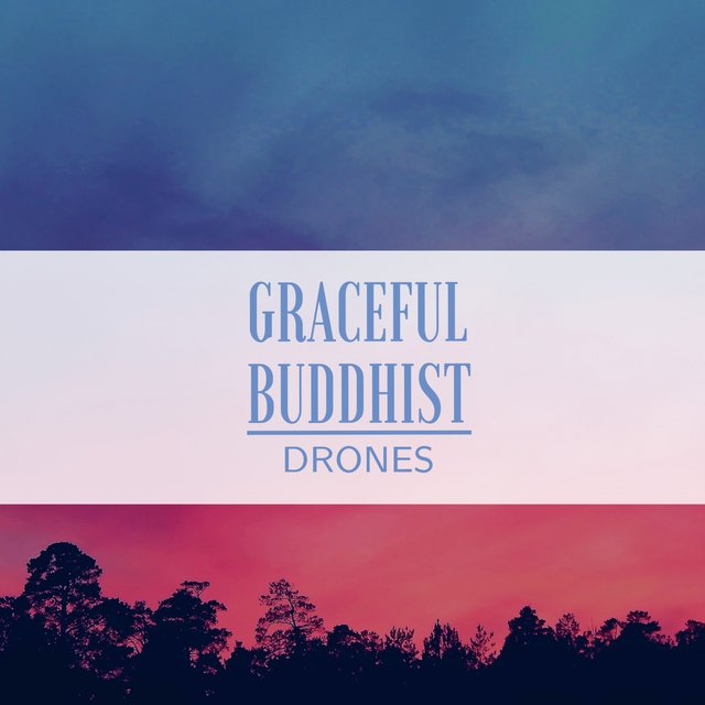 Graceful Buddhist Drones